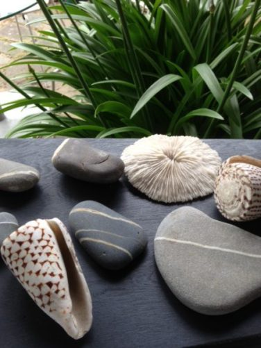 Stones and shells as weights for Outdoor Entertaining blog by Charis White