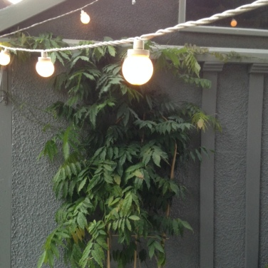 Festoon white lights for Outdoor Entertaining blog by Charis White