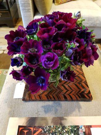 Purple anenomies at Sybil Colefax & John Fowler showroom on Charis White interiors blog