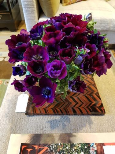 Purple anenomies at Sybil Colefax & John Fowler showroom on Charis White interiors blog