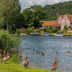 River Thames at Reading/Mapledurham. Image Thames River Cruise.co.uk/Pinterest: Charis White blog: Jelly