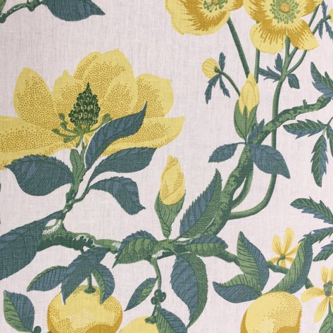 Margo_Fabric_Lemon_Fanny_Shorter_Website