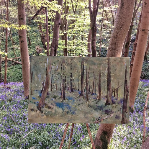 Flora bluebell forest